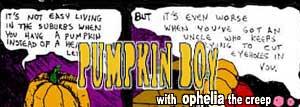 pumpkin boy's halloween